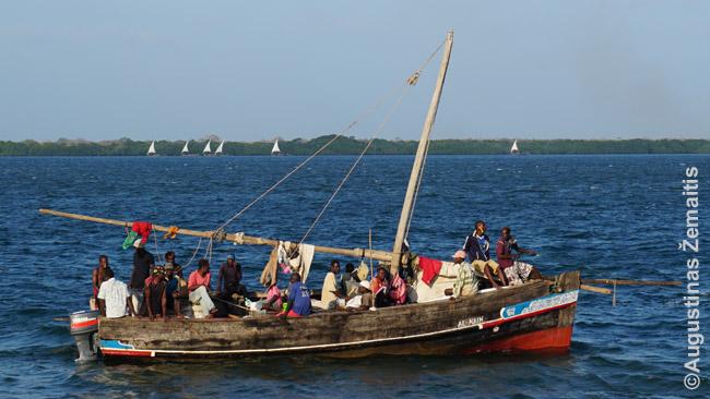Davas, arabų kilmės tradicinis suahelių laivas prie Lamu