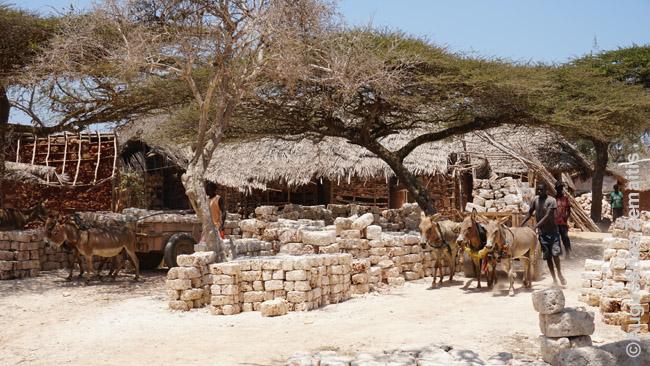 Krikščionių atvykėlių iš kitų Kenijos regionų kaimas prie Lamu, kur, gyvendami palaikiuose namuose, jie išgauna suaheliams statybines medžiagas
