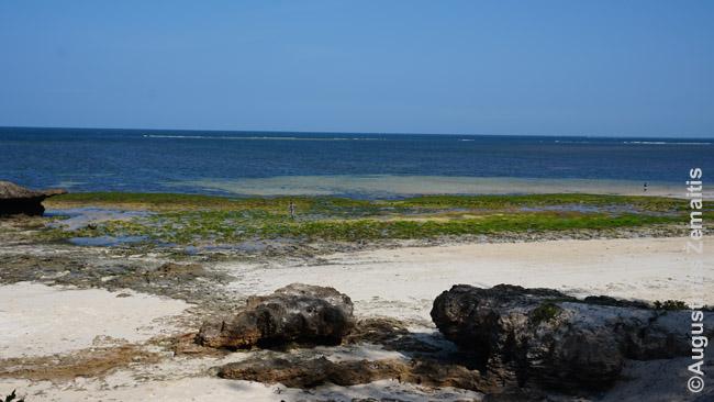 Malindžio paplūdimys