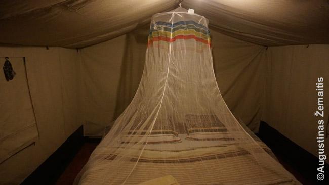 Išskleistas tinklas nuo uodų Masai Maros nacionalinio parko palapinėje-namelyje.