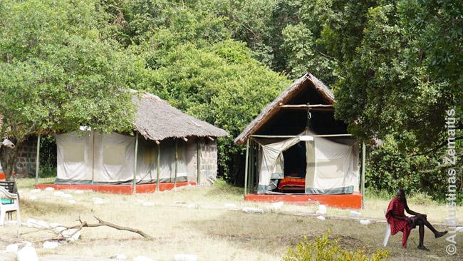 Palapinių stovykla (tented camp) prie Masai Maros