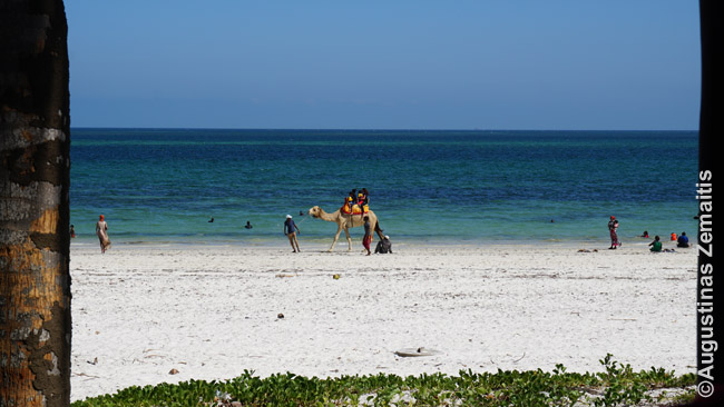 Njalio paplūdimys Mombasoje