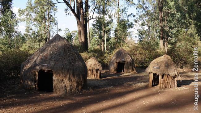 Kodėl keniečiai važiuoja gyventi į Nairobio lūšnynus? Atsakymą gali suprasti Bomas of Kenya muziejuje, kur pamatai namus, kokiuose jie gyvena kaimuose.