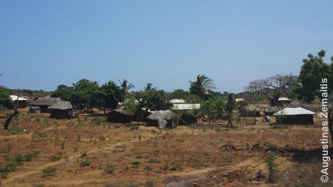 Vienas daugelio skurdžių pakelės kaimų žvelgiant nuo Lamu-Malindžio autobuso