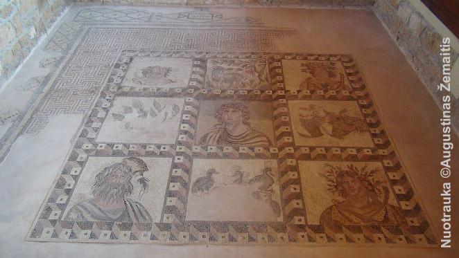 Viena mozaikų Pafose