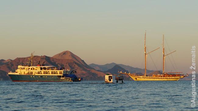 """""""Naktiniai laivai"""", kurių gausu aplink Komodo salą"""