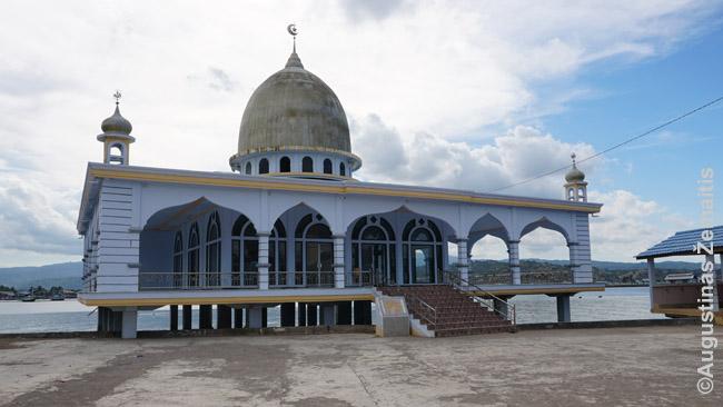 Vienintelis modernus pastatas Sapėje - mečetė ant polių virš vandens