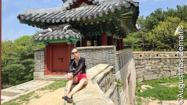 Pusano tvirtovėje