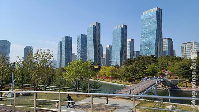 Songdo naujojo miesto centrinis parkas Inčeone prie Seulo - viena trumpų mūsų išvykų