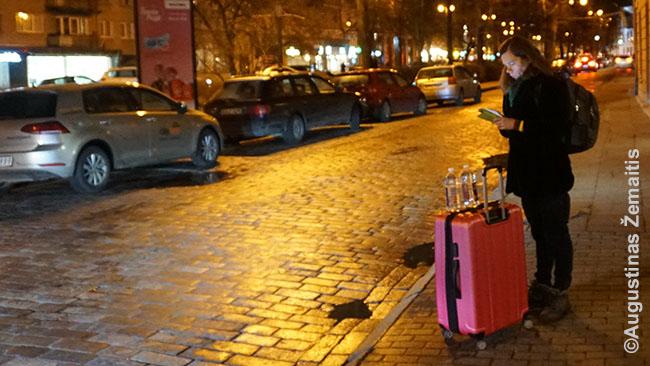 Laukiame taksi į Vilniaus autobusų stotį