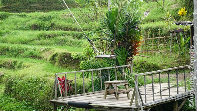 Parištos sūpynės prie ryžių terasų