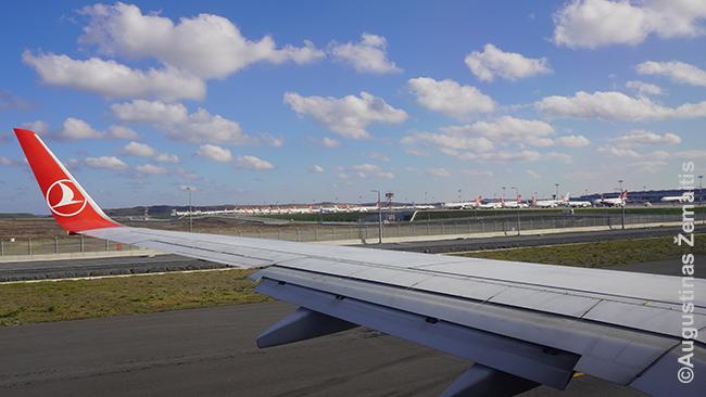 Naujojo Stambulo oro uosto peronas iš Turkish lėktuvo. Itin daug kitų lėktuvų sustatyta (žr. virš sparno). Matyt tie, kurie dėl viruso nenaudojami.
