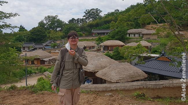 Tradiciniame kaime netoli Pusano