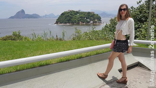 Rio de Žaneiras žvelgiant iš Niterojaus