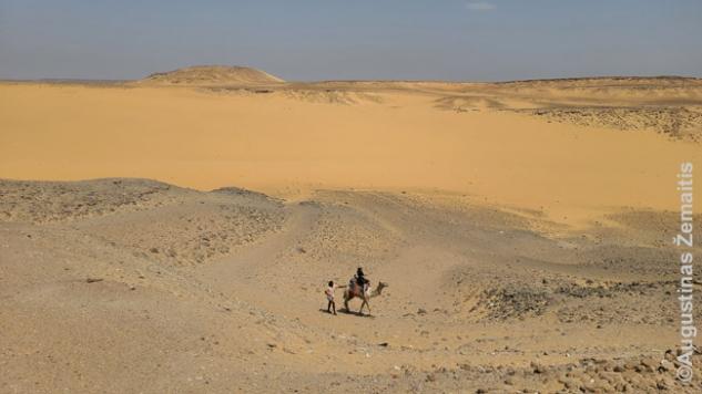 Kupranugariu per dykumą