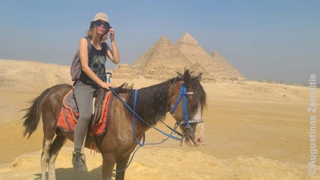 Prie piramidžių panoramos