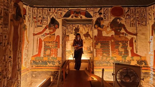 Nefertari kape