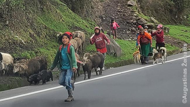 Pakelės vaizdai Ekvadore