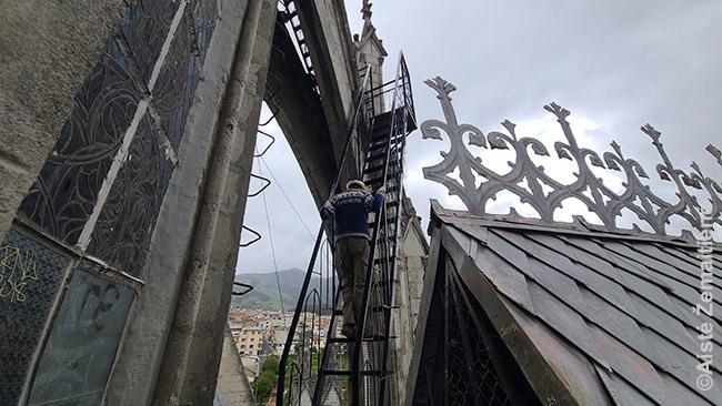 Lipu į Kito katedros špilį