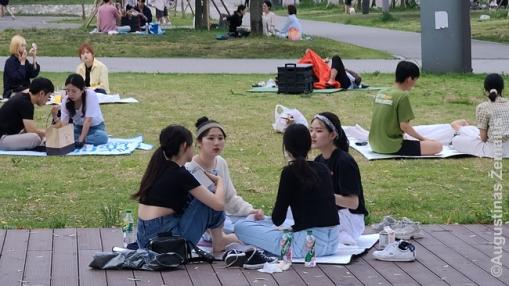 Piknikas Seule