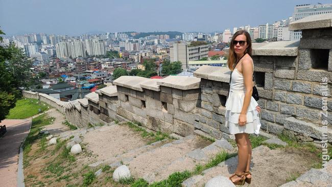 Ant Seulo sienos
