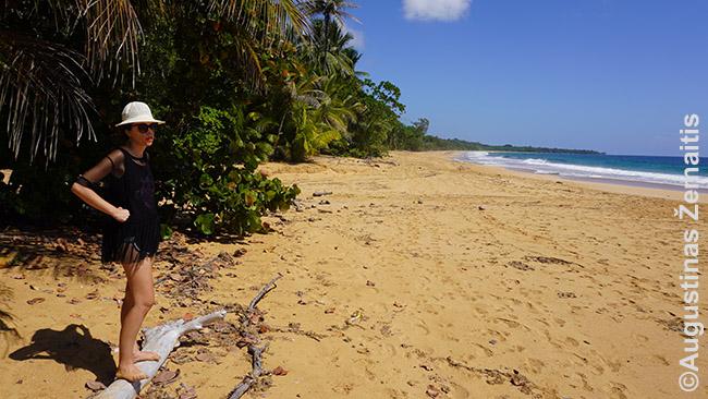 Tuščiame paplūdimyje Bluff