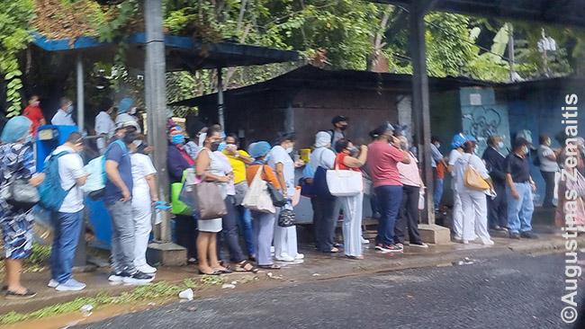 Naujiena: viešajame transporte be kaukių reikės ir veido skydų. Panamoje į tai žiūrima rimtai . Išpopuliarėjo prekyba veido skydais stotelėse.