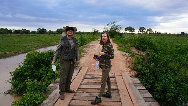 Žygyje per Pantanalį