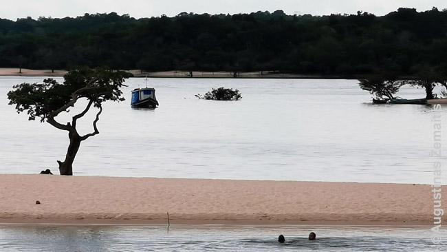 Du šeimos vyrai plaukte plaukia į Meilės salą