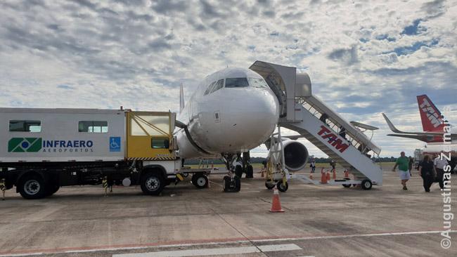 Išlipimas iš lėktuvo. Per trapą (dešinėje) lipa žmonės, į sunkvežimį (kairėje) iš bagažo skyriaus krauna žmonių bagažą, kurį vėliau atiduos oro uoste