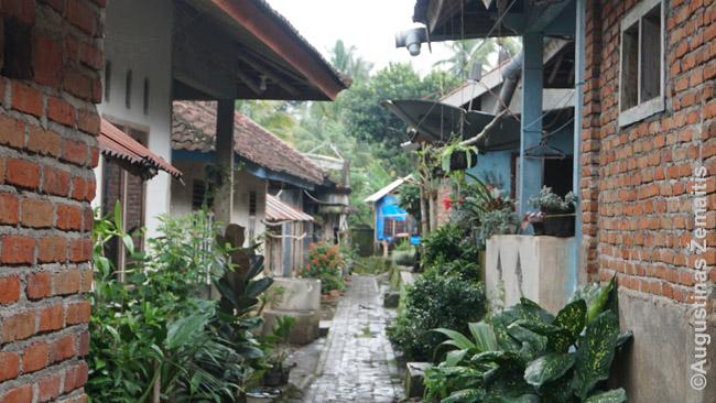 Tetebatu kaimas