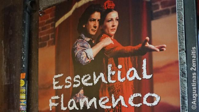 Flamenko pasirodymo reklama Madride