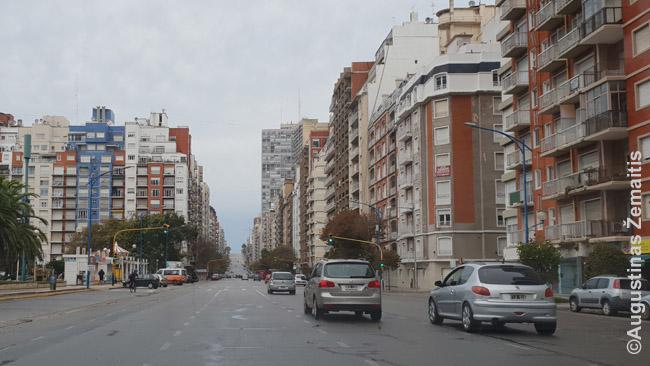 Tiesi Mar Del Platos gatvė supama šonais sulipusių aukštų daugiabučių