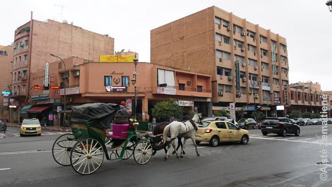 Vienas brangiausių, bet turistų mėgstamas būdas važiuoti po Marakešą - tokios karietos. Jų ten pilna. Jei kur jauti dvoką - reiškia, jų (ir jų arklių) bazė