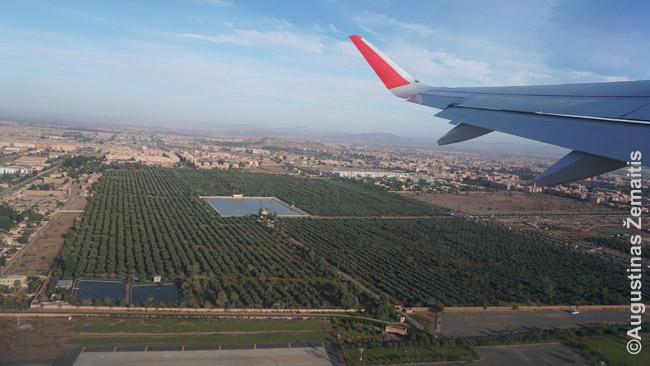 Menaros sodai žvelgiant iš lėktuvo