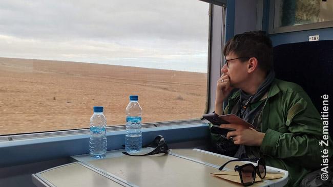 Iš traukinio Fesas-Marakešas stebiu, kaip keičiasi Maroko gamta: žalsvos kalvos prie Feso, dyka rausva dykuma prie Marakešo