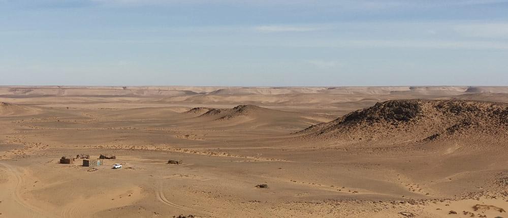 prekybos sistema juodojoje dykumoje internete