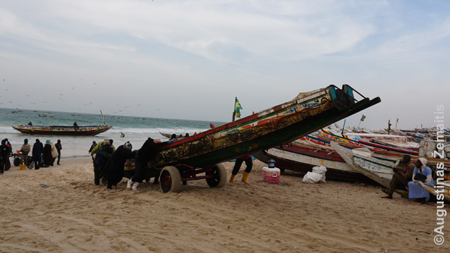 Žvejai ištempia į krantą savo laivą Nuakšoto žvejų uoste - tikslaiu, Žvejų pakrantėje, nes jokios prieplaukos nėra, reikia tempti rankomis laivus į paplūdimį