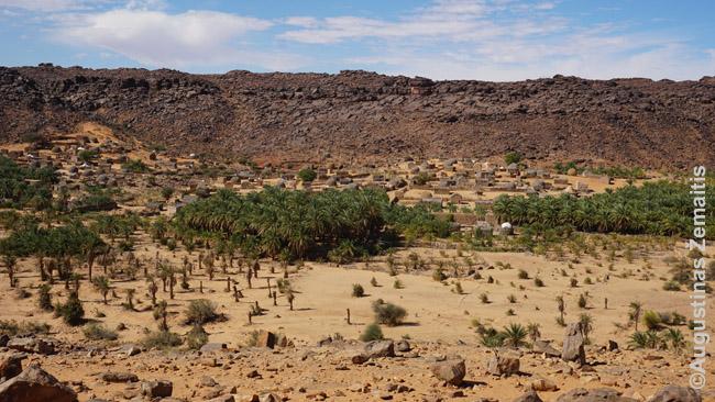 Mharito oazė