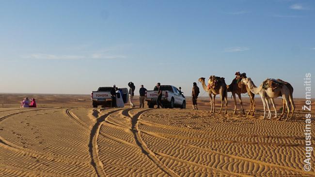 Ant kopos prie Šingečio: kupranugariai, džipai ir vietinės moterys