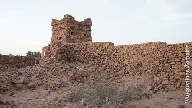 Uadano mečetės griuvėsiai