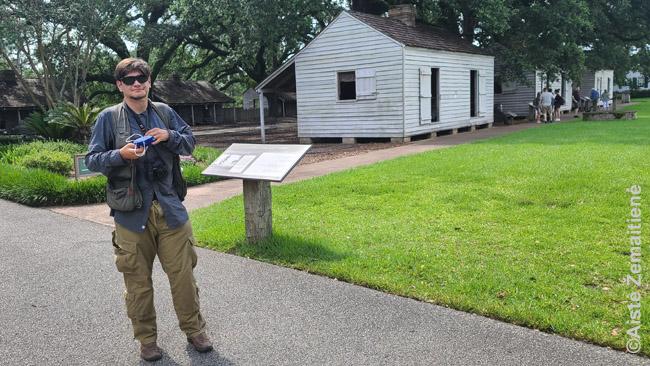 Prie 'Vergų gatvės' Oak alley plantacijoje (baltuose nameliuose gyveno vergai)