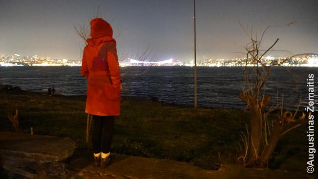 Laukiame fejerverkų prie Bosforo sąsiaurio Stambule.