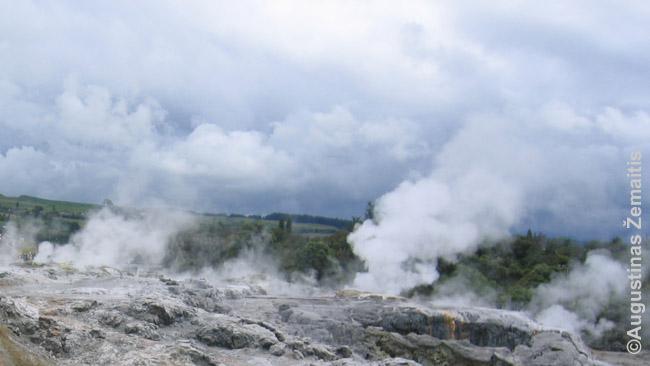 Rotorua geizeriai