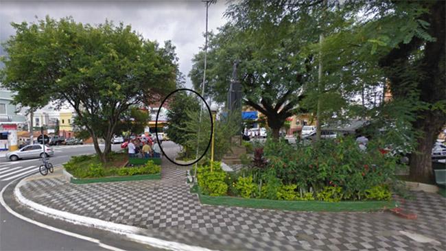 Lietuvos Laisvės paminklas Vila Zelinoje 2010 m. (Google Street View) - medis (apibrėžtas) jau pasodintas, bet paminklo dar galutinai neprarijo