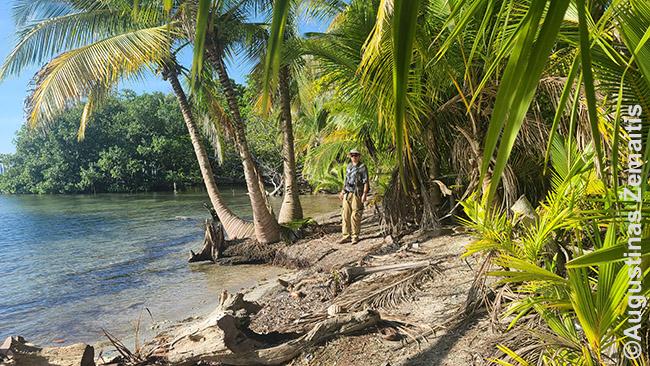 Einant taku aplink Carenero salą