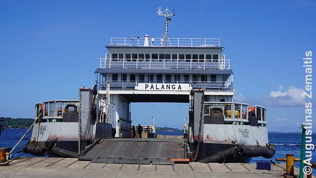 Keltas 'Palanga' Panamoje