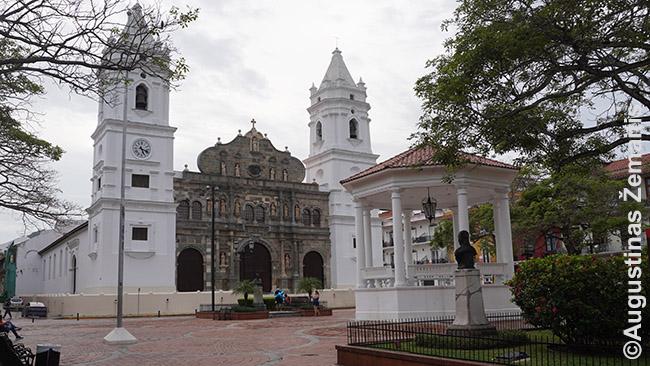 Panamos katedra