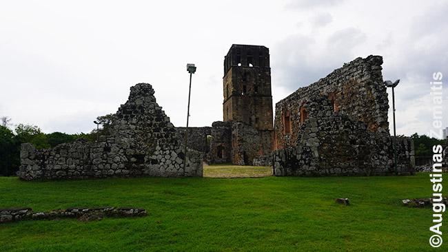 Senoji Panama (Panama Viejo)