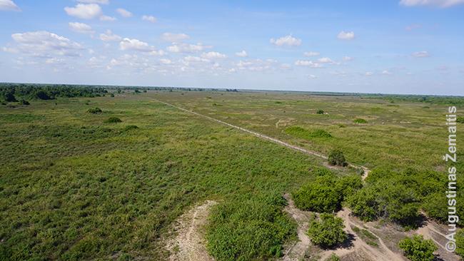 Pantanalio ganyklų panorama iš Poso Alegre apžvalgos bokšto